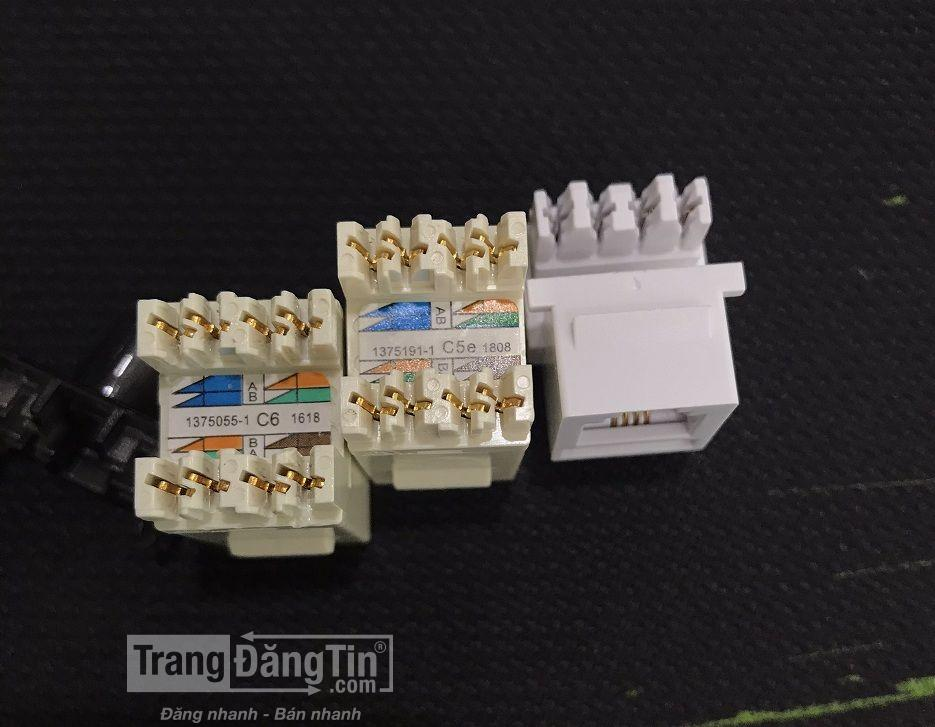 Nhân Mạng CommScope/AMP Category 5E Modular Jack RJ45