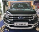 Ford Everest năm 2019 giao ngay